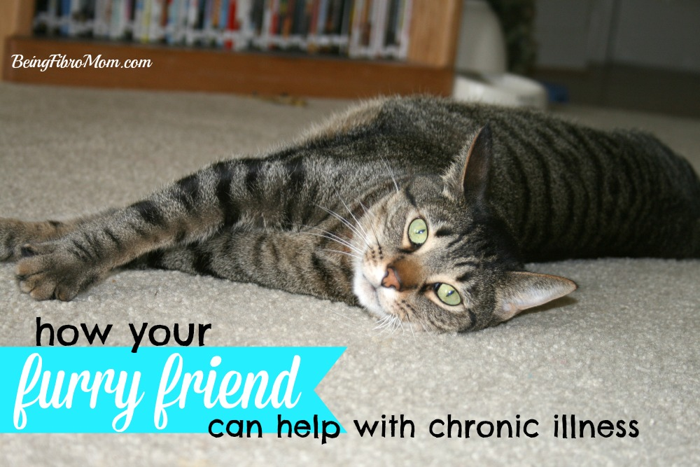 how your furry friend can help with healing #chronicillness #beingfibromom
