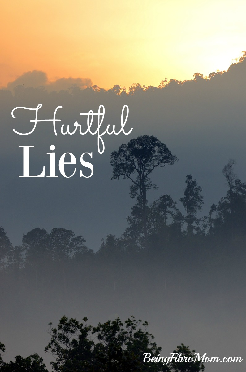Hurtful Lies #hurtful #lies #MyFibroJournal