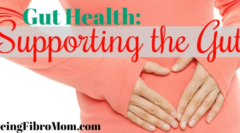 Gut Health: Supporting the Gut #guthealth #beingfibromom