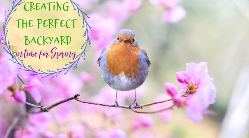 Creating the Perfect Backyard In Time for Spring #beingfibromom #fibroparenting