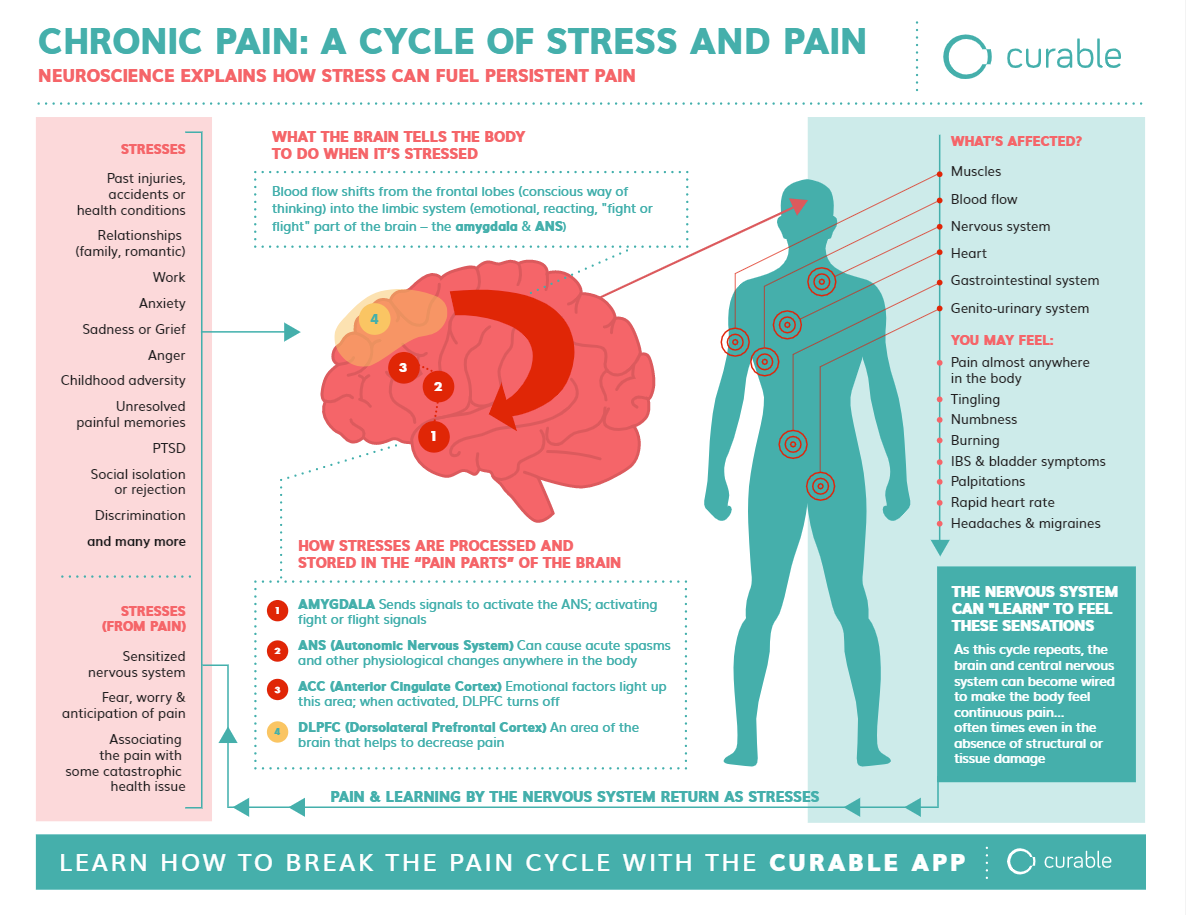 chronic pain: a cycle of stress and pain #chronicpain #curable #beingfibromom #fibromyalgia