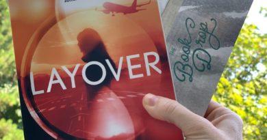 layover by David Bell #bookreviews #beingfibromom #brandisbookcorner #layover #davidbell